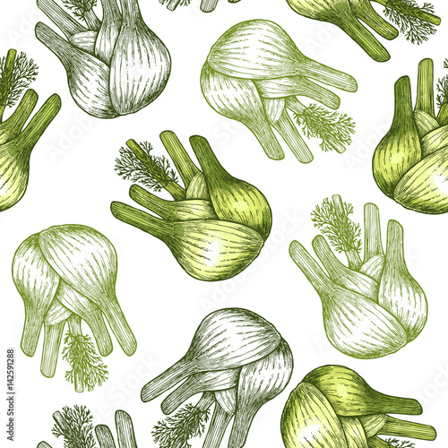 Fototapeta Fennel bulb seamless pattern. Botanical Fennel background. Vector illustration
