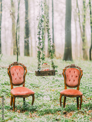 The composition of the stump hanging on the herbs with the wedding cake on it and between two stylishorange chairs in the green forest Poster