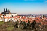 Old Town of Prague and church Saint Vitus in Prague
