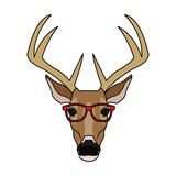 deer or stag hipster animal icon image vector illustration design