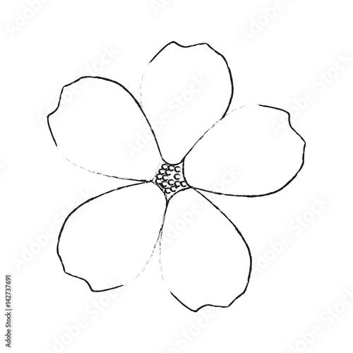 delicate flower icon image vector illustration design