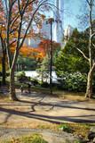 New York City's Central Park with Skyline