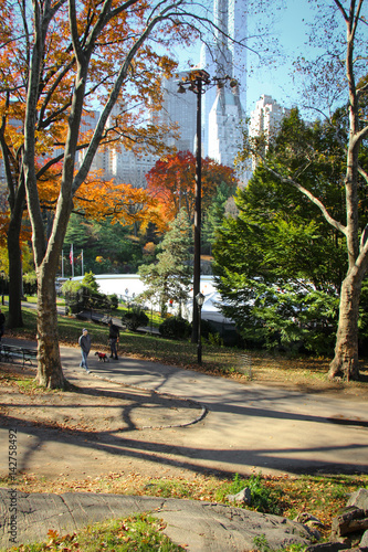 Foto op Canvas New York New York City's Central Park with Skyline