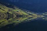 Green farmland mirroring in lake Wagital, Swiss Alps.