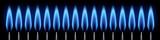 Brûleurs allumés. Flamme bleue. Fond noir - 142802465