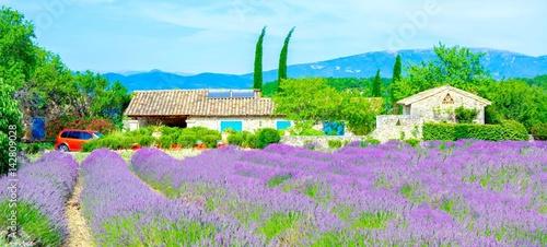 Spoed canvasdoek 2cm dik Lavendel Provence, France