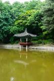 Changdeokgung Palace (창덕궁 후원)