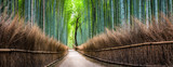 Fototapeta Bambus - Japanischer Bambuswald in Arashiyama, Kyoto, Japan © eyetronic