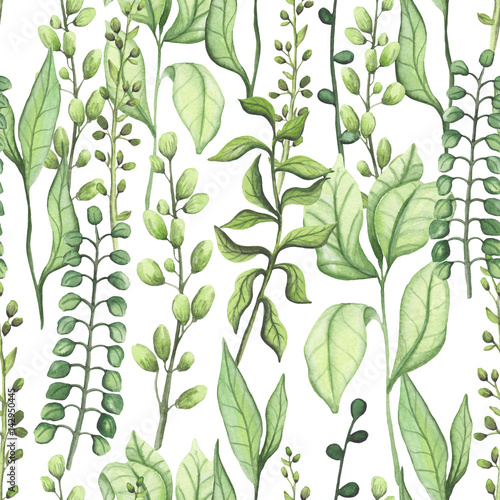 Seamless Pattern of Watercolor Green Leaves and Herbs