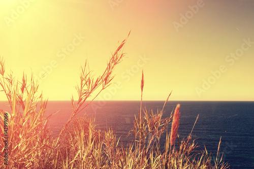 Plexiglas Zwavel geel Silhouette of two palms on sunset background