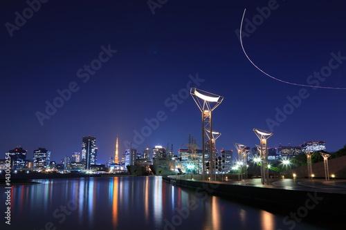 Tokyo night view Poster
