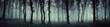dark forest panorama fantasy landscape - 143025282