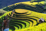 Professional woman photographer taking outdoor portraits with prime lens,Rice fields on terraced of Mu Cang Chai, YenBai, Vietnam, soft focus