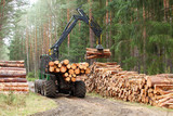 The harvester working in a forest. Harvest of timber. Firewood as a renewable energy source. Agriculture and forestry theme. - 143118456