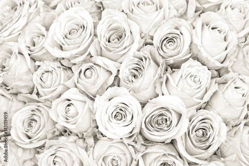 biale-roze