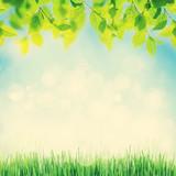 Fototapeta Abstract sunny spring background