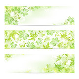 Spring leaves banners - 143267690