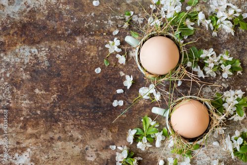 Uncolored natural easter eggs in green espresso cups, happy easter concept with white spring flowers, retro easter background