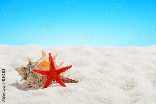 Poster Red starfish on the beach on background of blue sky