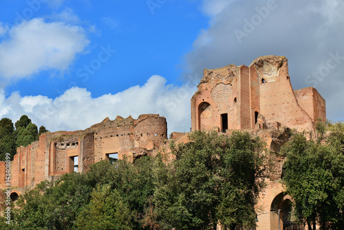 Poster Palatine Hill Imperial Palace ancient ruins in Rome