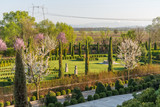 Beautiful ornamental garden with blooming trees and lawn