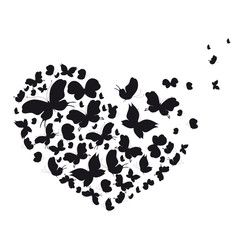 black heart, butterfly, isolated on a white