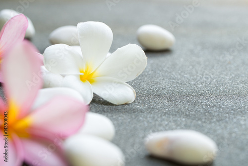 Fotobehang Plumeria Spa stones concept