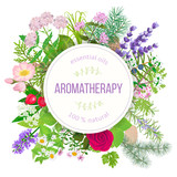 Fototapety Popular essential oil plants label set. round badge with text aromatherapy