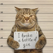 The wild cat broke a bottle of expensive gin. He was arrested for it.