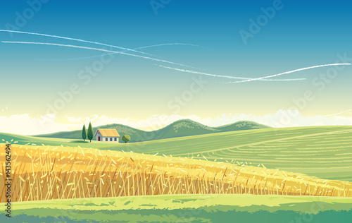 Rural landscape with wheat field and house on the hill.