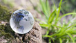 Leinwanddruck Bild - Klimawandel, Naturschutz