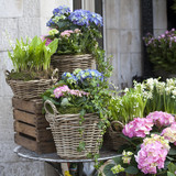 wicker baskets with a pink and blue hydrangea, red Kalanchoe and ivy adorn the entrance to the house