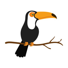 toucan exotic bird icon