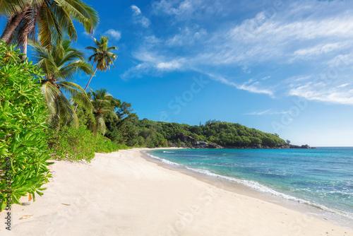 Egzotyczna piaszczysta plaża.