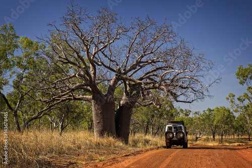 Aluminium Baobab Outback Track at the Kimberleys - Western Australia