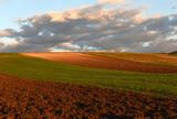 plowed field, spring, landscape, rural scene