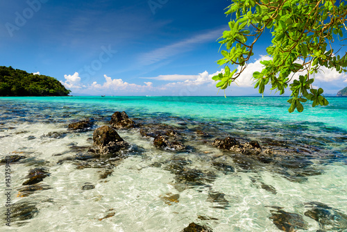 Poster Beautiful tropical beach, rocks, exotic plant leaves and clear turquoise sea water