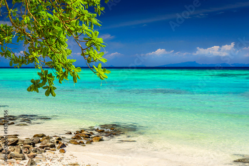 Beautiful tropical beach, rocks, exotic plant leaves and clear turquoise sea water Poster
