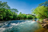 Fototapety Guadalupe River New Braunfels, Texas