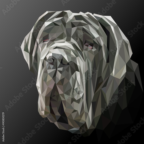 Mastiff dog animal low poly design. Triangle vector illustration. © shekularaz