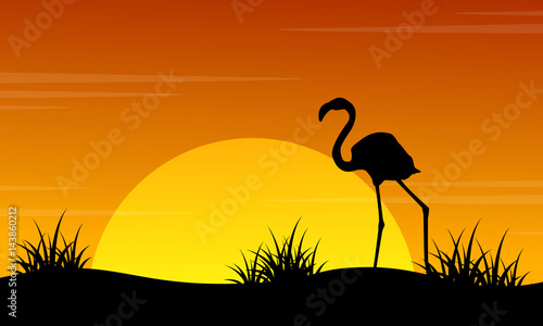 Fotobehang Zoo At sunset flamingo scenery silhouettes
