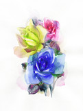 flowers. watercolor illustration