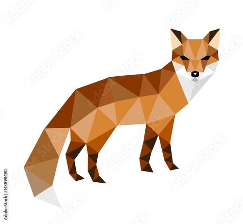 head of fox - 143899490