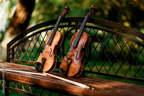 instrumento-musical-de-violin-de-orquesta-violines-en-el-parque-en-el-banco