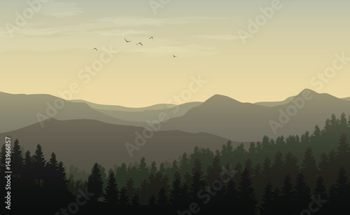 Fotobehang Beige Morning landscape with misty silhouettes of mountains and hills, forest with coniferous trees and flying bird in the yellow toned sky