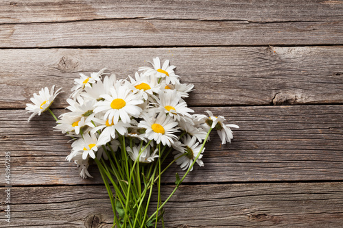 Daisy chamomile flowers bouquet - 143967295