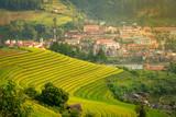 Vietnam Yen Bai  Mu Cang Chai City top view from rice field terrace on the mountain