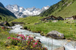 Leinwandbild Motiv Almhütten mit Gebirgsbach Alpenrosen und Gletscher im Hintergrund