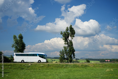 Poster The white bus traveling on the road next to tall trees in a rural landscape unde