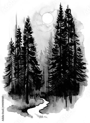 Dark forest - 144018447